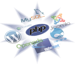 Software and Web Services